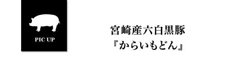 宮崎産六白黒豚
